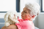 Pet Companion Program Missoula